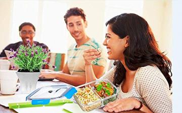 Frischhaltedose, Glas Mahlzeit-Behälter 2 Fächer Luftdicht Essensbehälter, Bento Lunch-Box, Lunch-Behlter, BPA-frei, Mikrowelle, Backofen, Gefrierschrank, Spülmaschinenfest(1,04 Liter, Rechteck, Blau) -