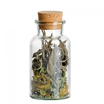 MamboCat 12er Set Gewürzgläser | Füllmenge 300 ml | Wiederverwendbare Glasdose + Korkverschluss | Hochwertiges rundes Glas | Aufbewahrung von Tee Kräutern Gewürzen - 2