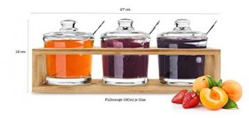 Sendez 3 Gewürzgläser mit Holzgestell und Löffeln Gewürzdosen Parmesandosen Marmeladendosen Set Honigdose Dose Zuckerdose Salzdose Vorratsdose 27x13x12cm 10-TLG - 8